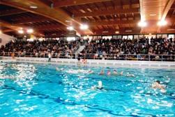 piscina saline